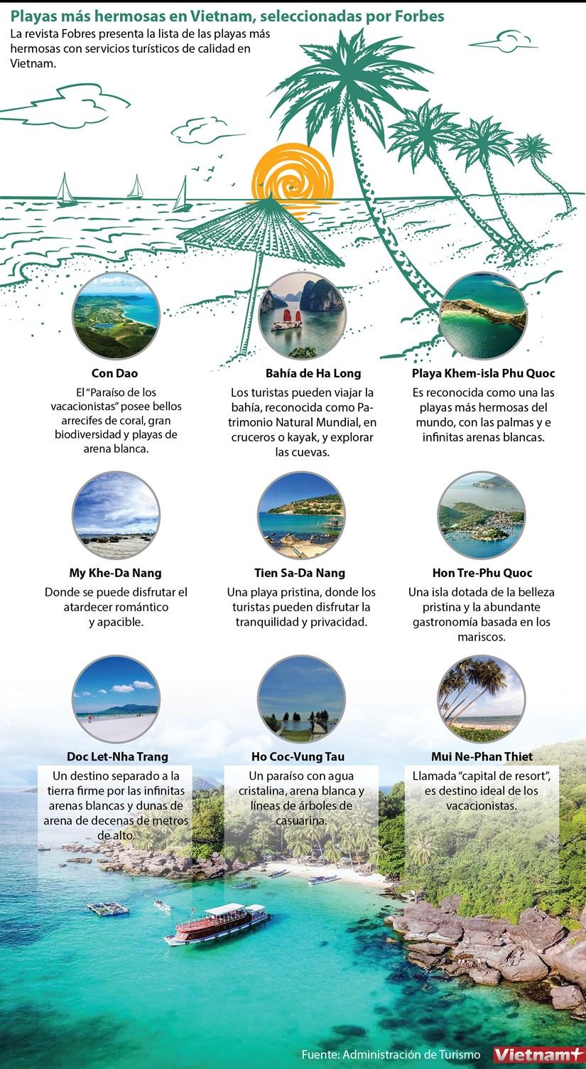 Playas mas hermosas en Vietnam, seleccionadas por Forbes hinh anh 1