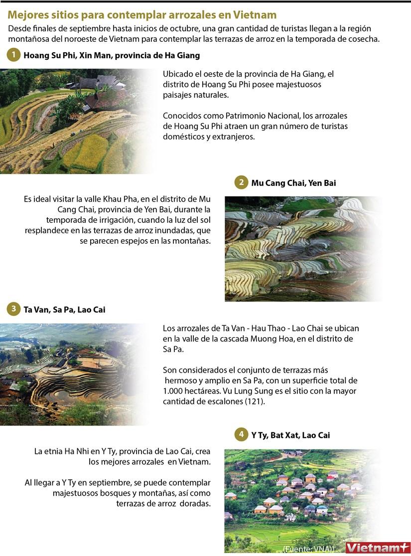 Mejores sitios para contemplar arrozales en Vietnam hinh anh 1