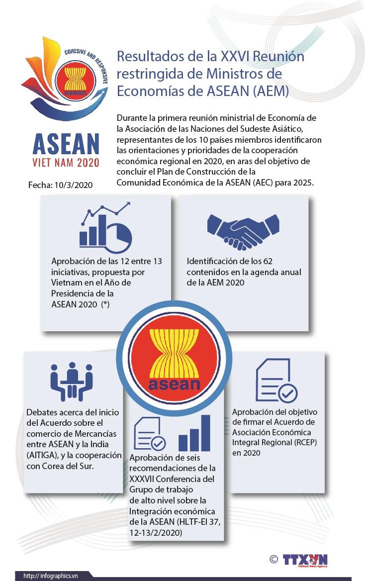 Resultados de la XXVI Reunion restringida de Ministros de Economias de ASEAN (AEM) hinh anh 1