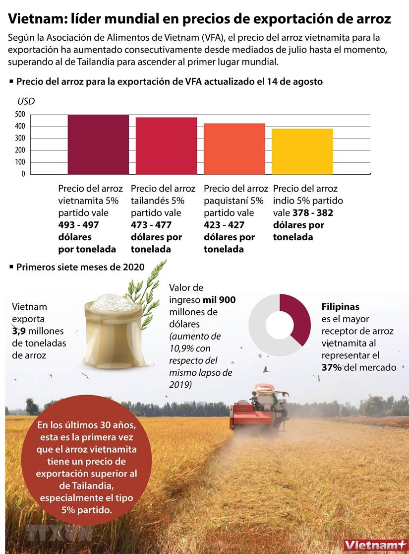 Vietnam: lider mundial en precios de exportacion de arroz hinh anh 1