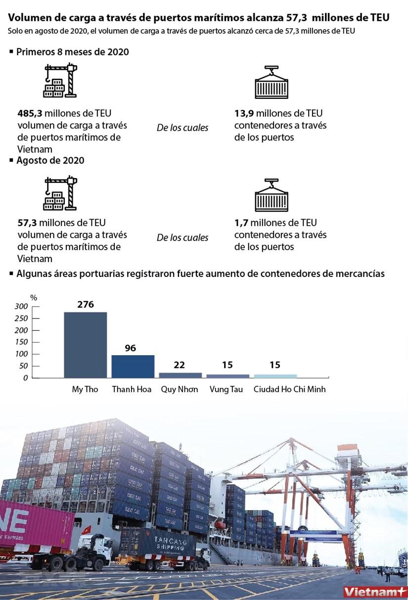 Volumen de carga a traves de puertos maritimos alcanza 57,3 millones de TEU hinh anh 1