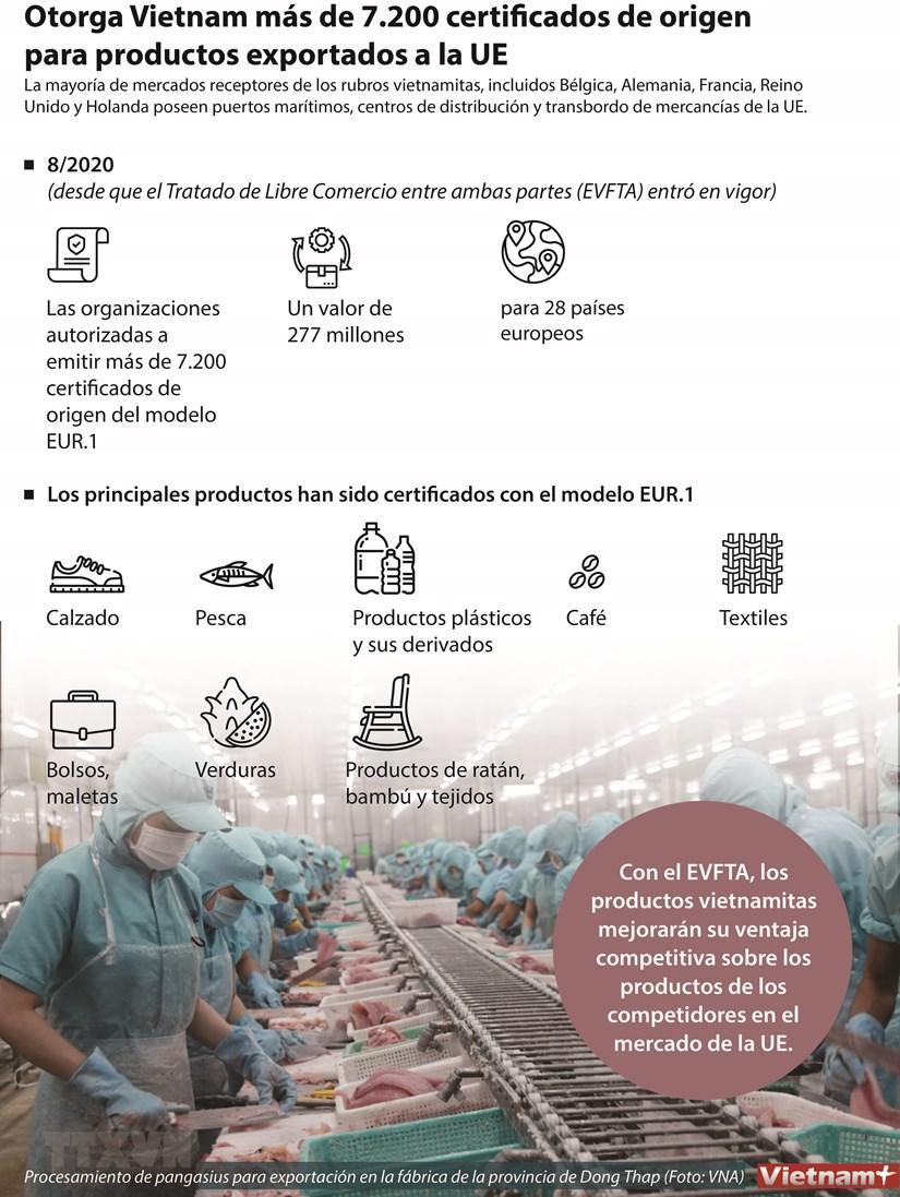 Otorga Vietnam mas de 7.200 certificados de origen para productos exportados a la UE hinh anh 1