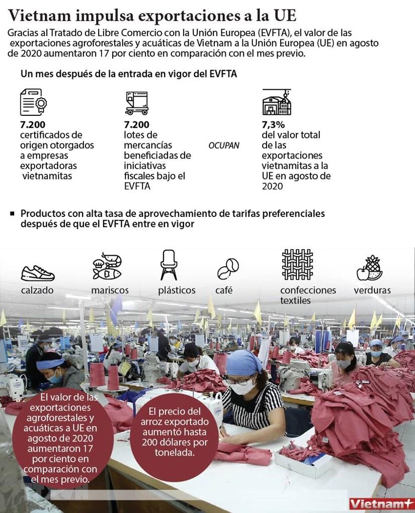 Vietnam impulsa exportaciones a la UE hinh anh 1