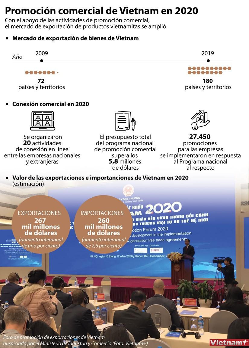 Promocion comercial de Vietnam en 2020 hinh anh 1