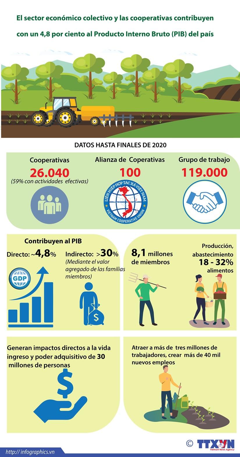 El sector economico colectivo y las cooperativas contribuyen con un 4,8 por ciento al Producto Interno Bruto del pais hinh anh 1