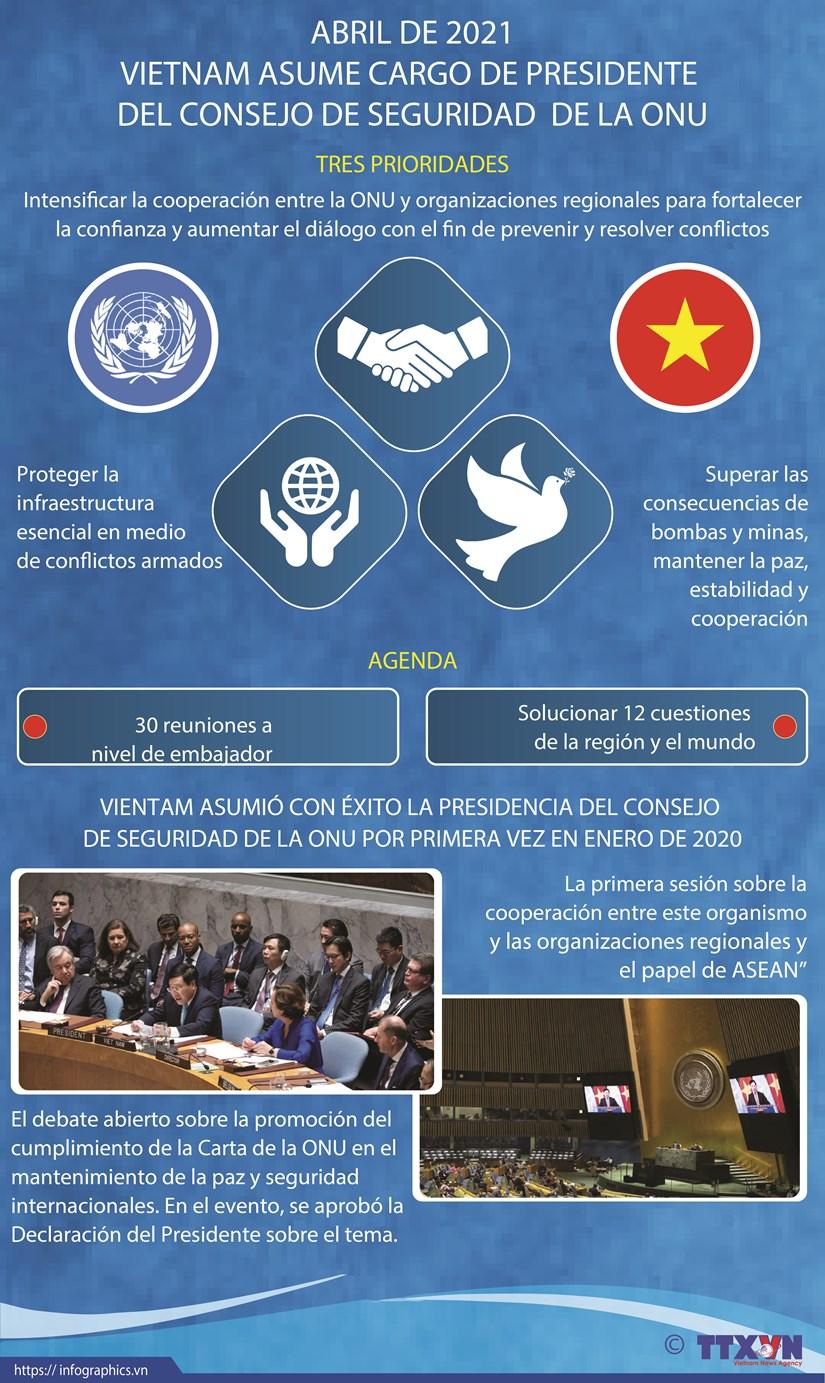 Vietnam asume la presidencia del Consejo de Seguridad de la ONU hinh anh 1