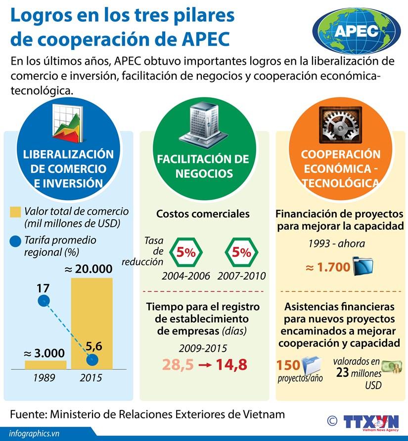[Infografia] Logros en los tres pilares de cooperacion de APEC hinh anh 1