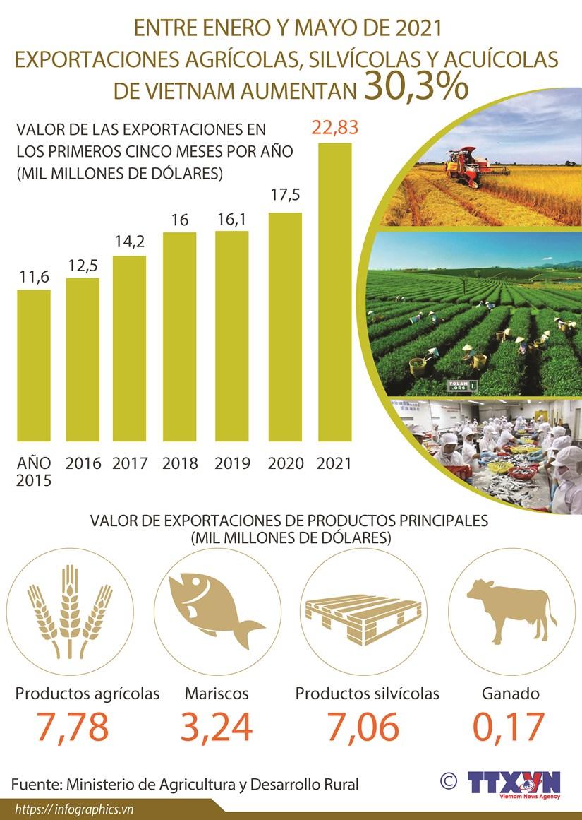 Crecen exportaciones agricolas, silvicolas y acuicolas de Vietnam entre enero y mayo hinh anh 1