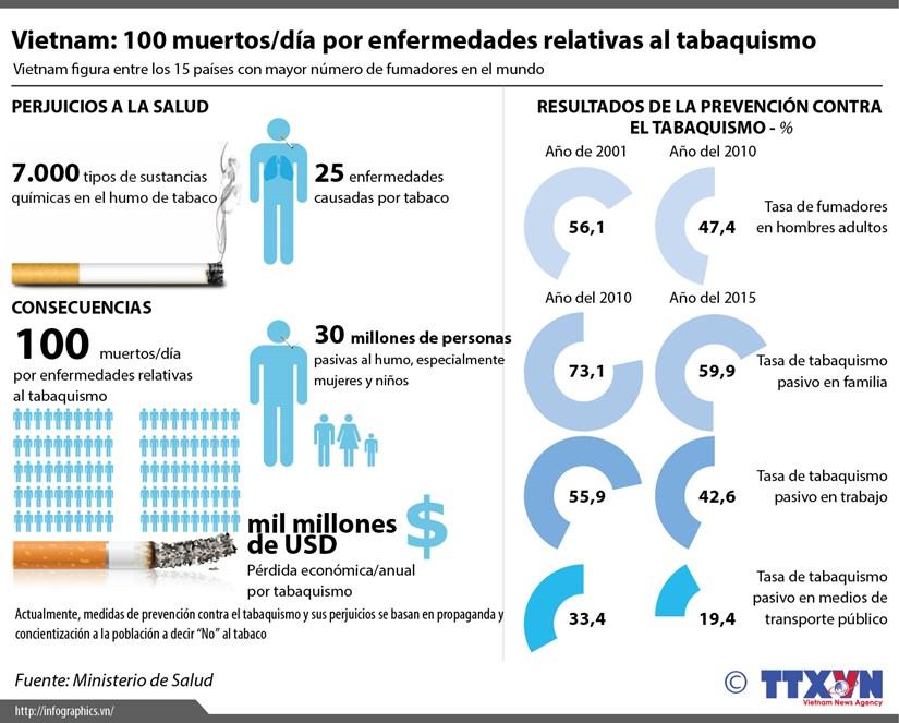 [Infografia] Vietnam: 100 muertos al dia por enfermedades relativas al tabaquismo hinh anh 1