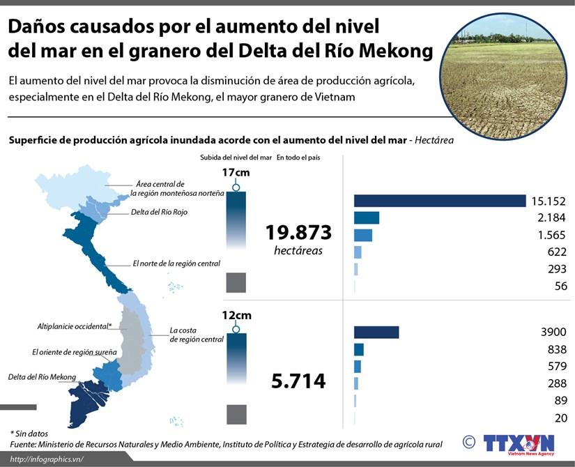[Infografia] Danos causados por el aumento del nivel del mar en Vietnam hinh anh 1