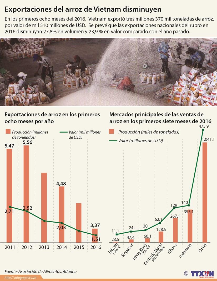 [Infografia] Disminuyen exportaciones de arroz de Vietnam hinh anh 1