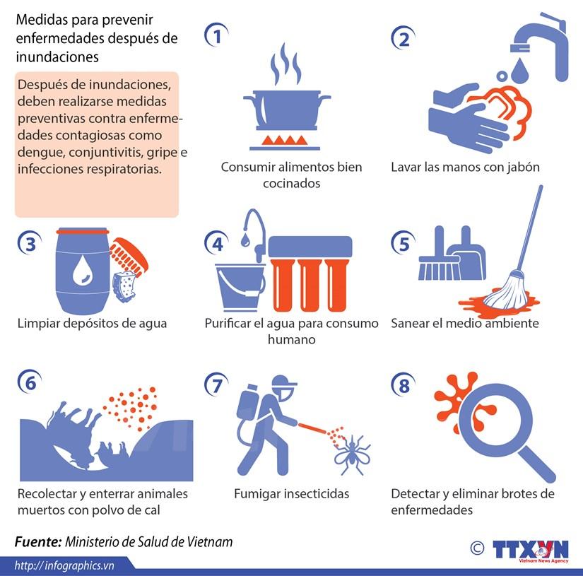 [Infografia]Medidas para prevenir enfermedades despues de inundaciones hinh anh 1
