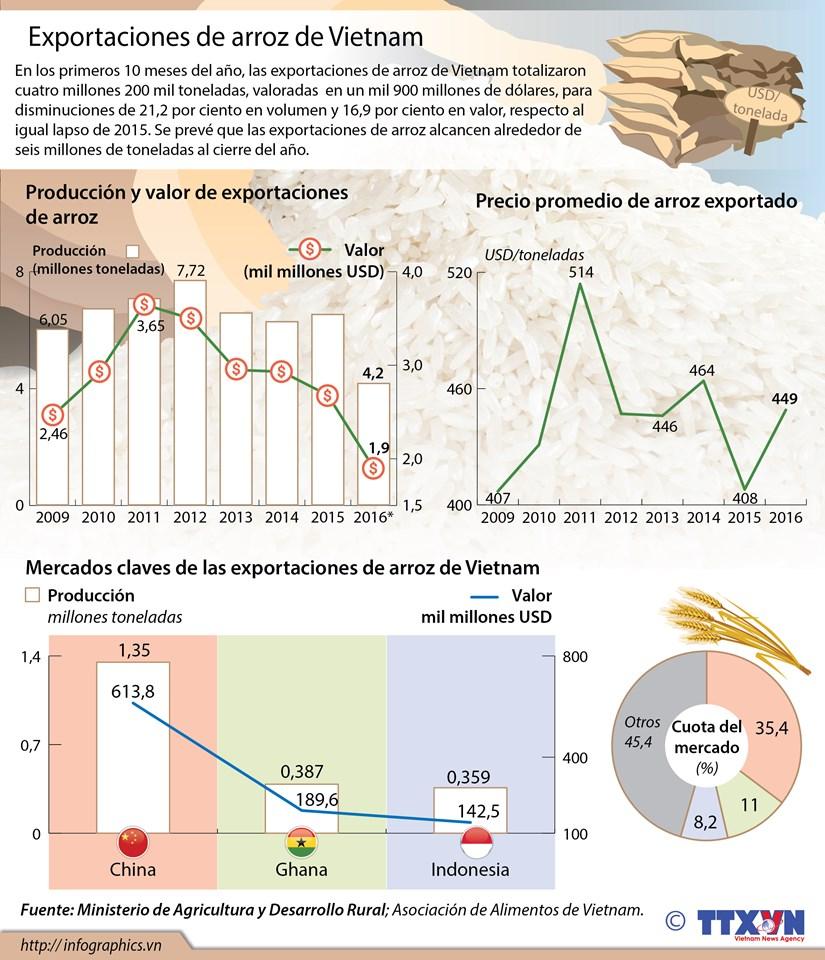 [Infografia] Exportaciones de arroz de Vietnam en primeros 10 meses hinh anh 1