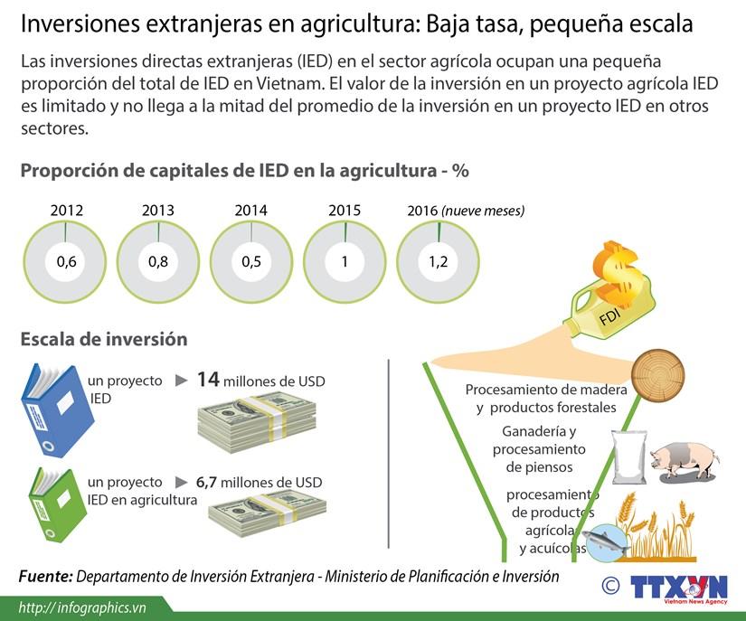 [Infografia] Inversiones extranjeras en la agricultura de Vietnam hinh anh 1