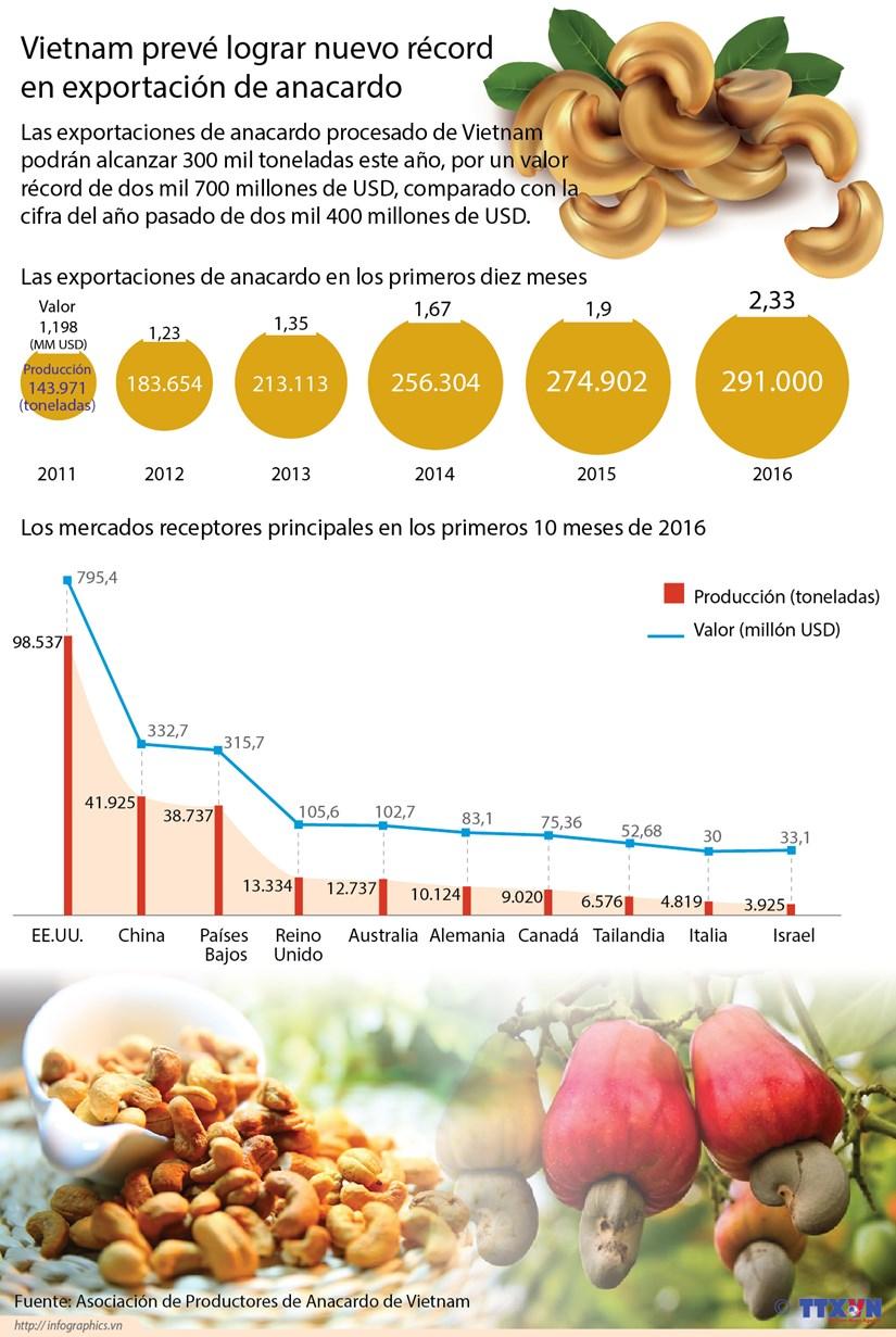 [Infografia] Vietnam preve lograr nuevo record en exportacion de anacardo hinh anh 1