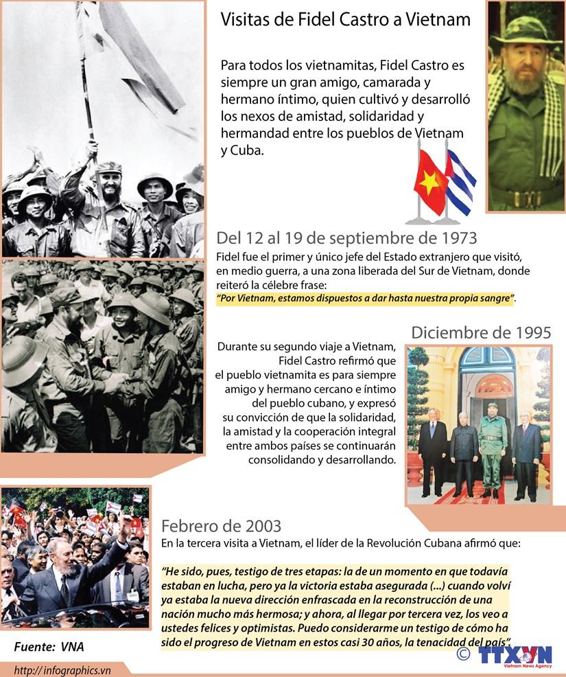 [Infografia] Visitas de Fidel Castro a Vietnam hinh anh 1