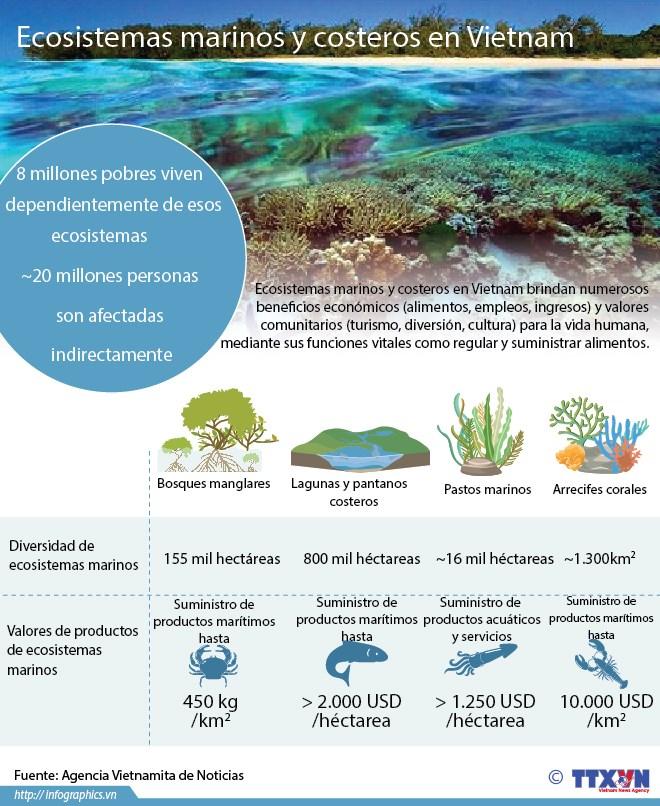 [Infografia] Ecosistemas marinos y costeros en Vietnam hinh anh 1
