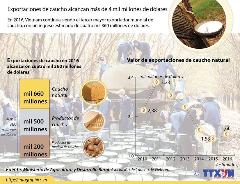 Exportaciones de caucho alcanzan mas de cuatro mil millones de dolares hinh anh 1