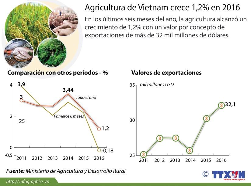 [Infografia] Agricultura de Vietnam crece 1,2% en 2016 hinh anh 1