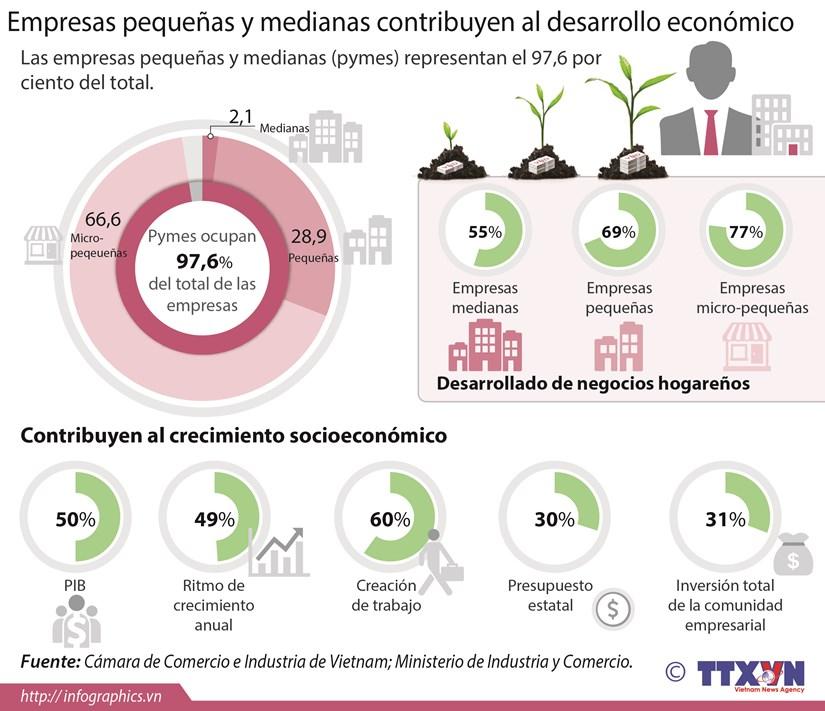 [Infografia] Empresas pequenas y medianas contribuyen al desarrollo economico hinh anh 1