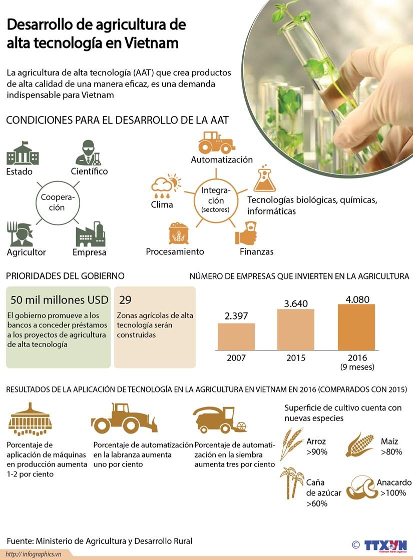 [Infografia] Desarrollo de agricultura de alta tecnologia en Vietnam hinh anh 1