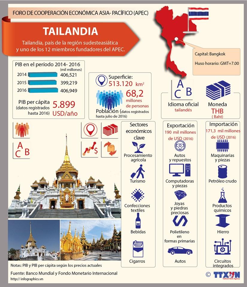 [Infografia] Tailandia, uno de los 12 miembros fundadores del APEC hinh anh 1
