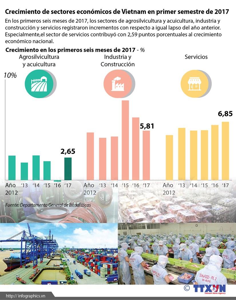 [Infografia] Crecimiento de sectores economicos de Vietnam en primer semestre de 2017 hinh anh 1