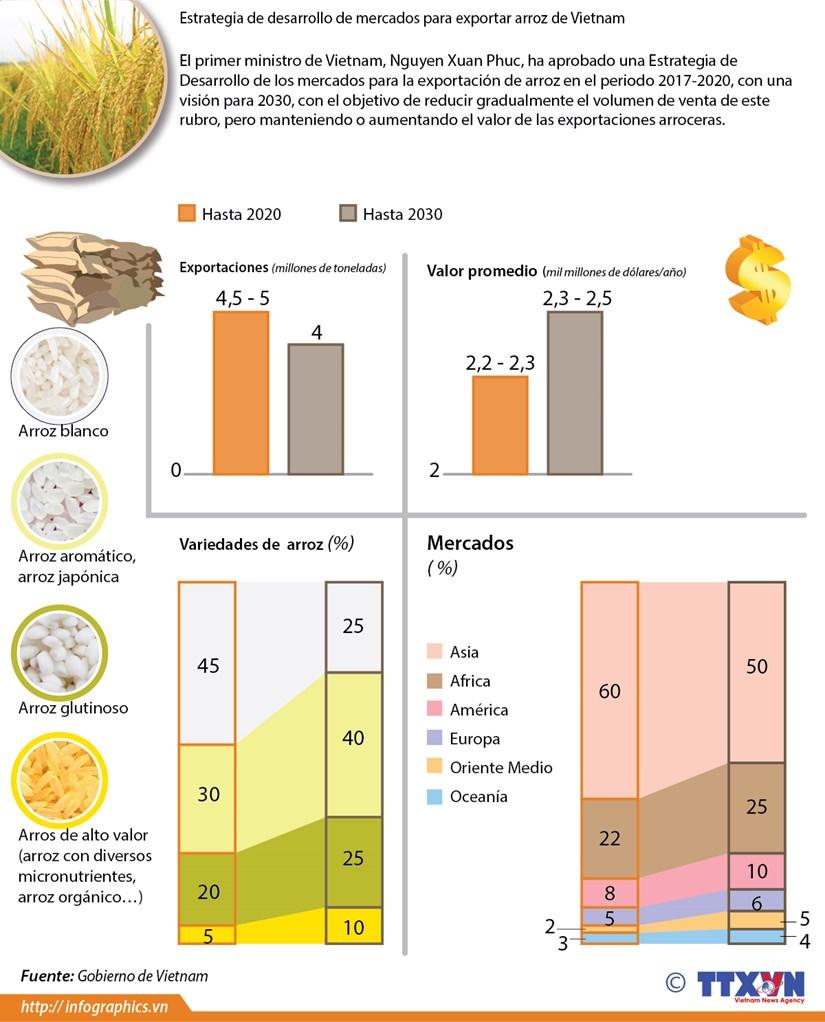 Estrategia de desarrollo de mercados para exportar arroz de Vietnam hinh anh 1