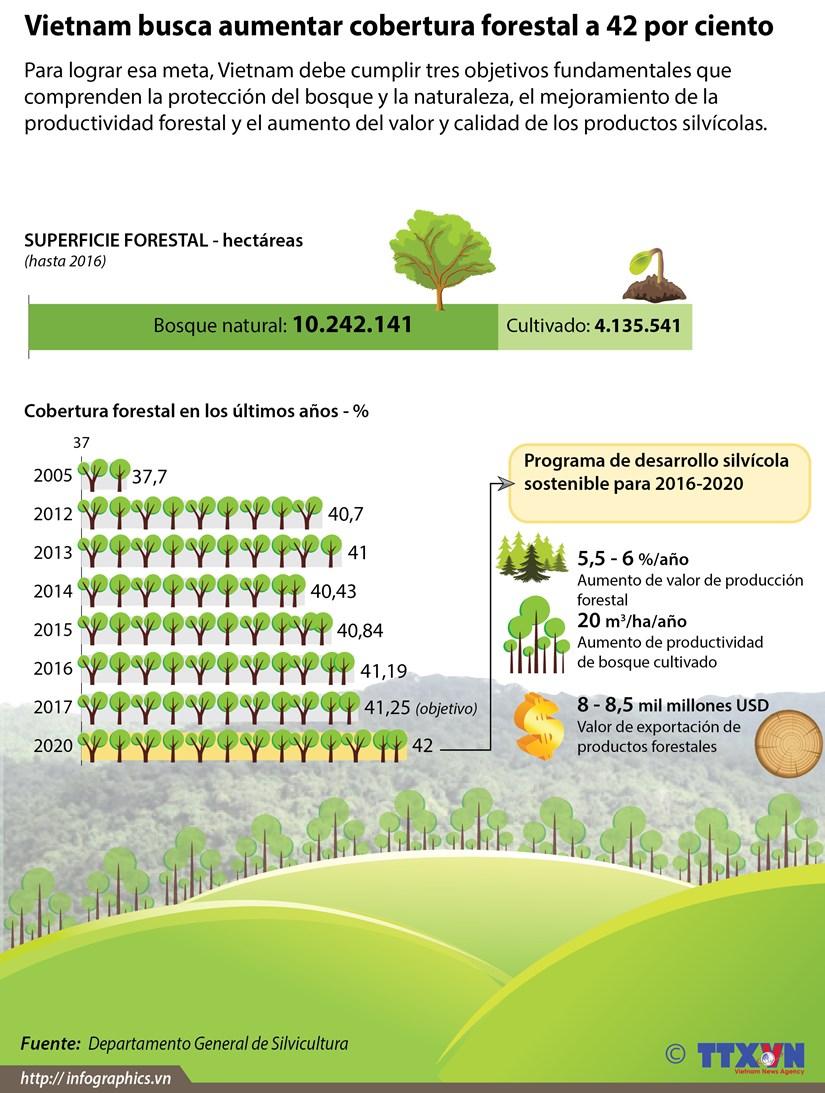 [Infografia] Vietnam busca aumentar cobertura forestal a 42 por ciento hinh anh 1