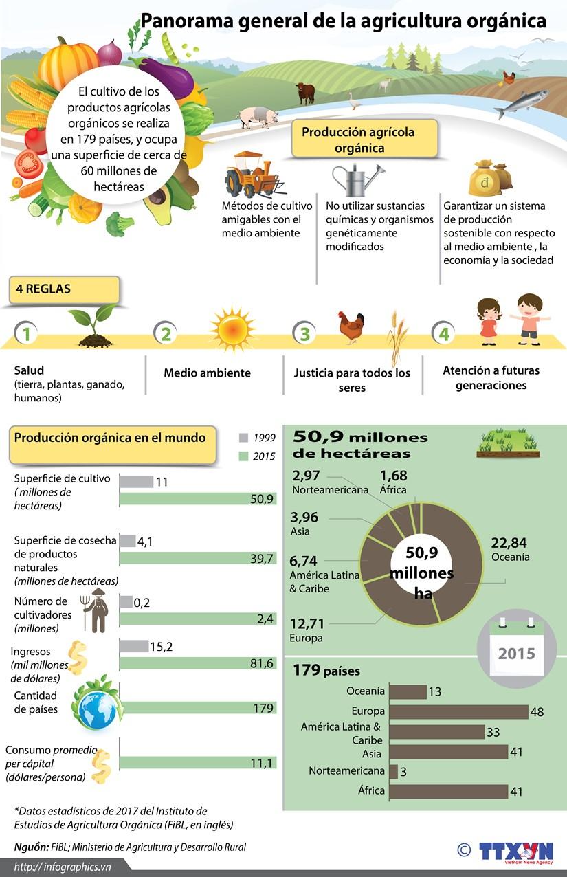[Infografia] Panorama general de la agricultura organica hinh anh 1