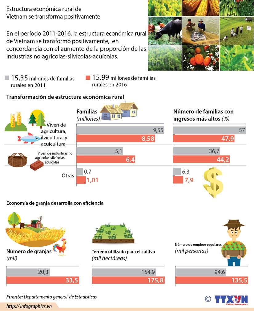 Estructura economica rural de Vietnam se transforma positivamente hinh anh 1
