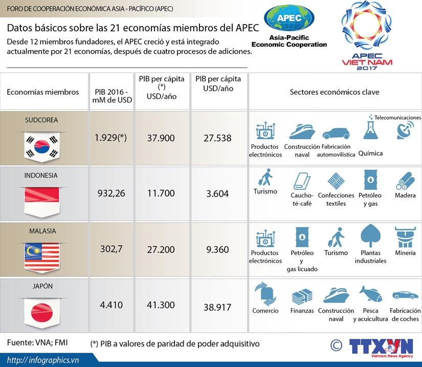 [Infografia] Datos basicos sobre las 21 economias miembros del APEC hinh anh 1