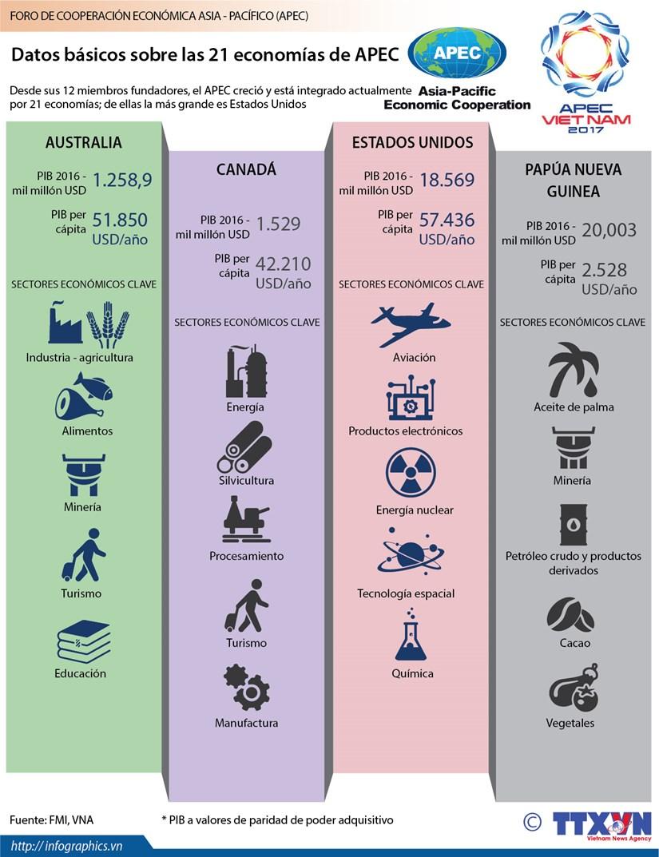 [Infografia] Datos basicos sobre las 21 economias de APEC hinh anh 1