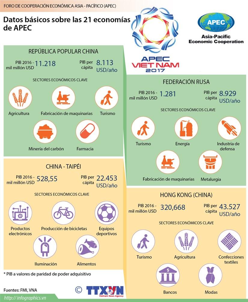 [Infografia] Datos basicos sobre las 21 economias miembros del APEC (parte 3) hinh anh 1