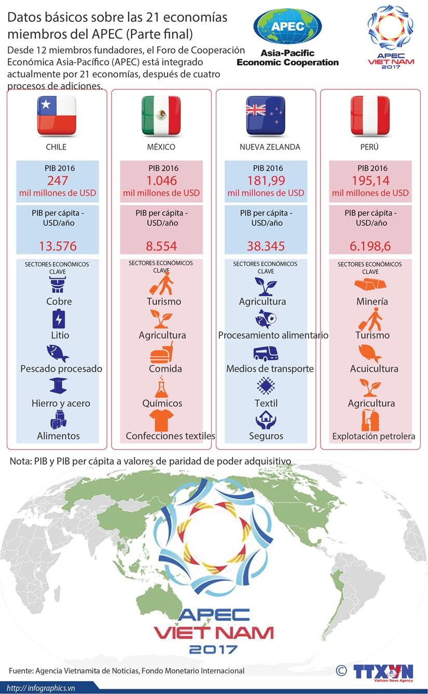 [Infografia] Datos basicos sobre las 21 economias miembros del APEC (Parte final) hinh anh 1