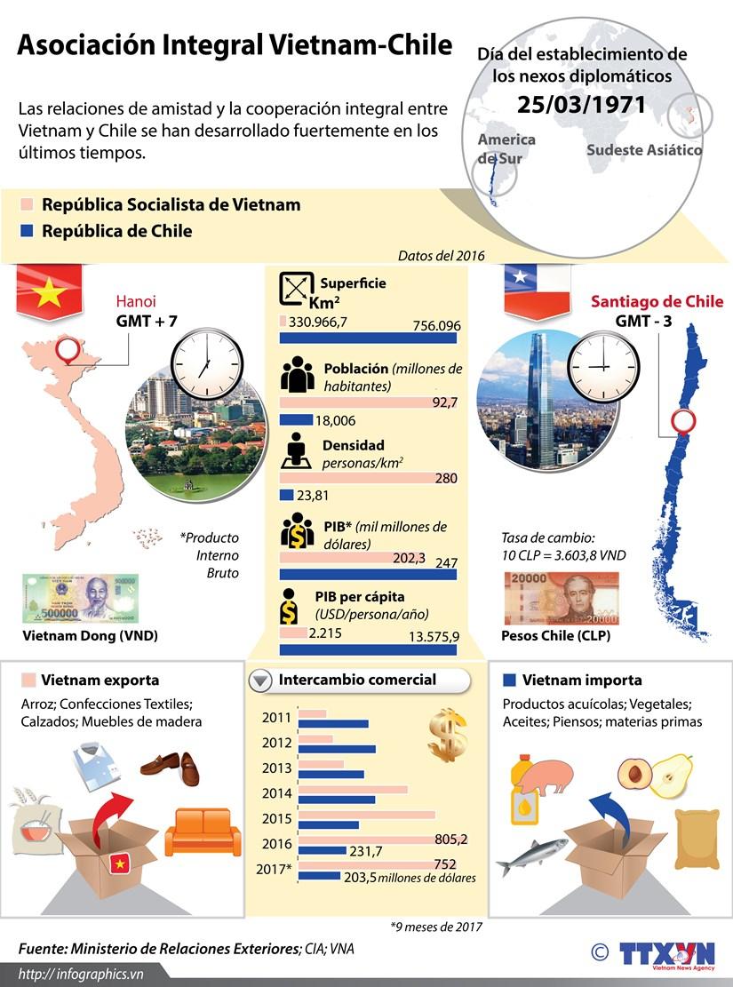 [Infografia] Asociacion de amistad entre Vietnam y Chile hinh anh 1