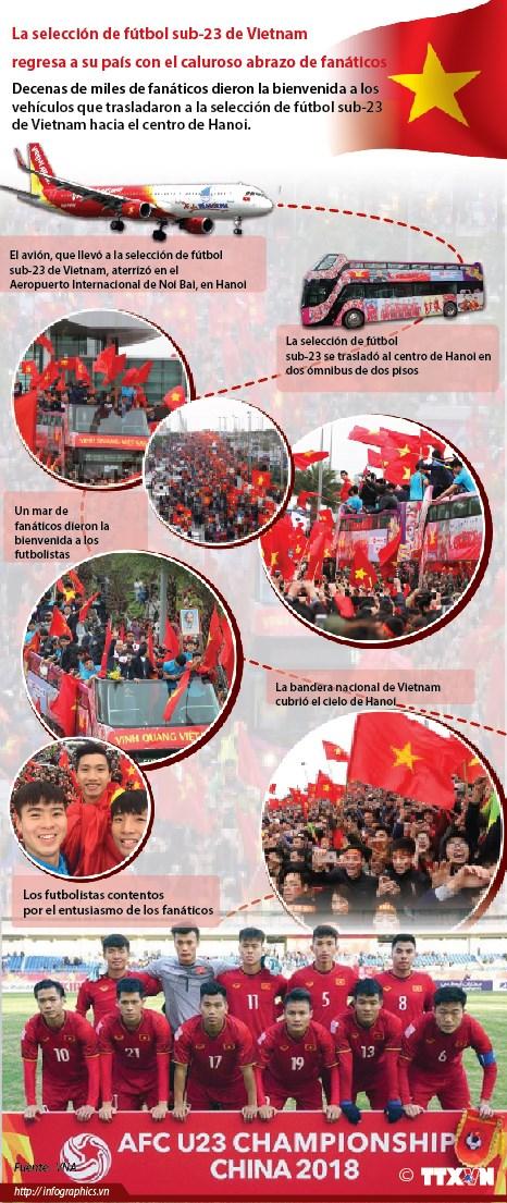 La seleccion de futbol sub-23 de Vietnam regresa a su pais con el caluroso abrazo de fanaticos hinh anh 1