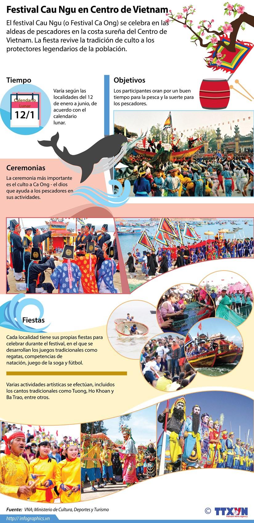 [Infografia] Festival Cau Ngu en Centro de Vietnam hinh anh 1