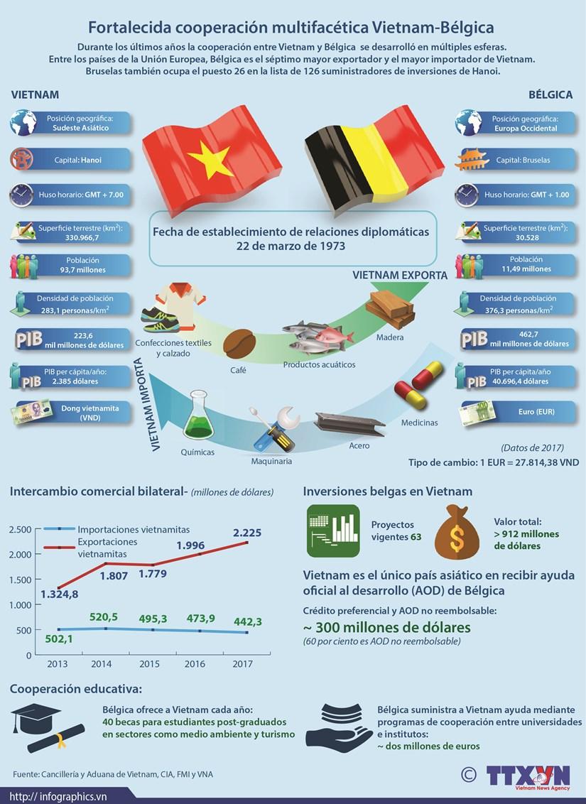 [Infografia] Relaciones Vietnam-Belgica hinh anh 1