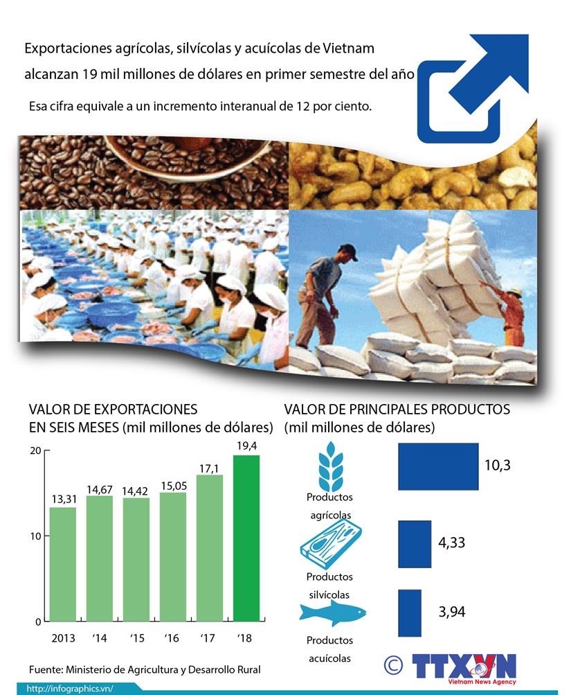 [Infografia] Exportaciones agricolas de Vietnam alcanzan 19 mil millones de dolares hinh anh 1