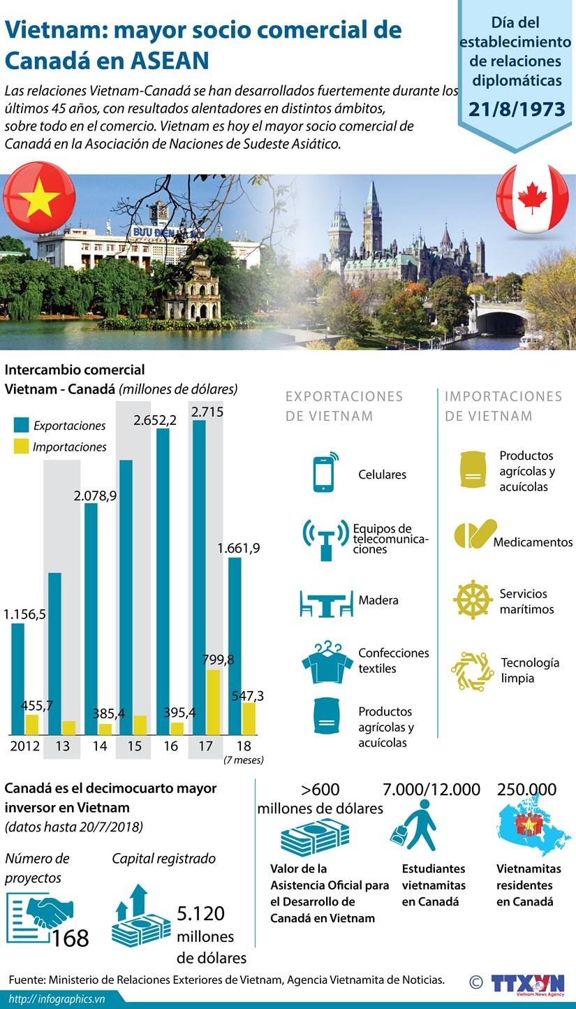 [Infografia] Vietnam: mayor socio comercial de Canada en ASEAN hinh anh 1