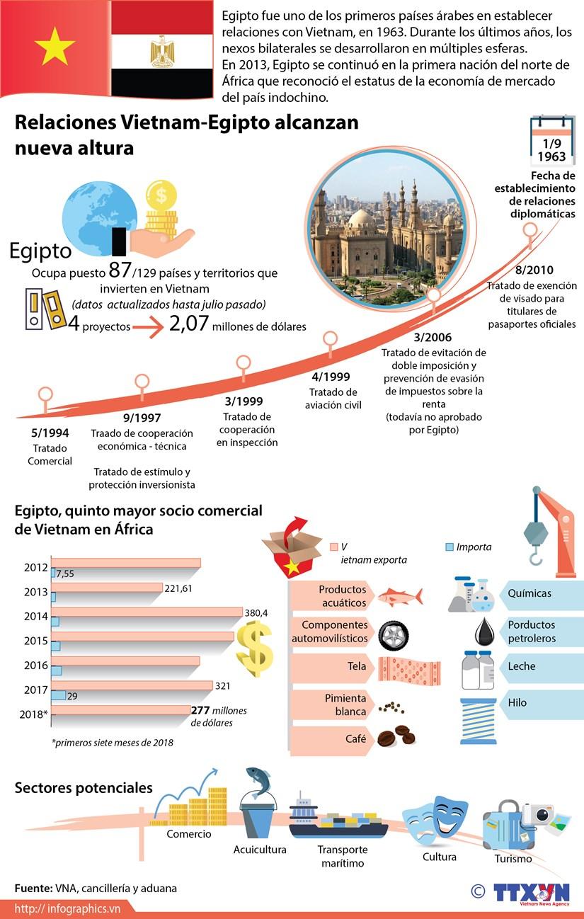 [Infografia] Relaciones Vietnam-Egipto alcanzan nueva altura hinh anh 1