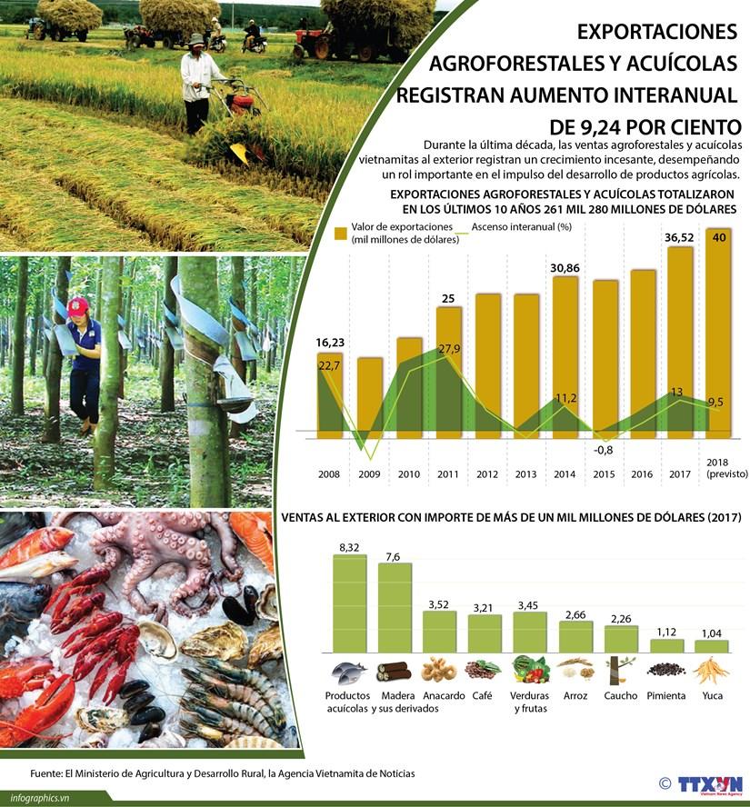 (Info) Exportaciones agroforestales y acuicolas registran aumento interanual de 9,24 por ciento hinh anh 1