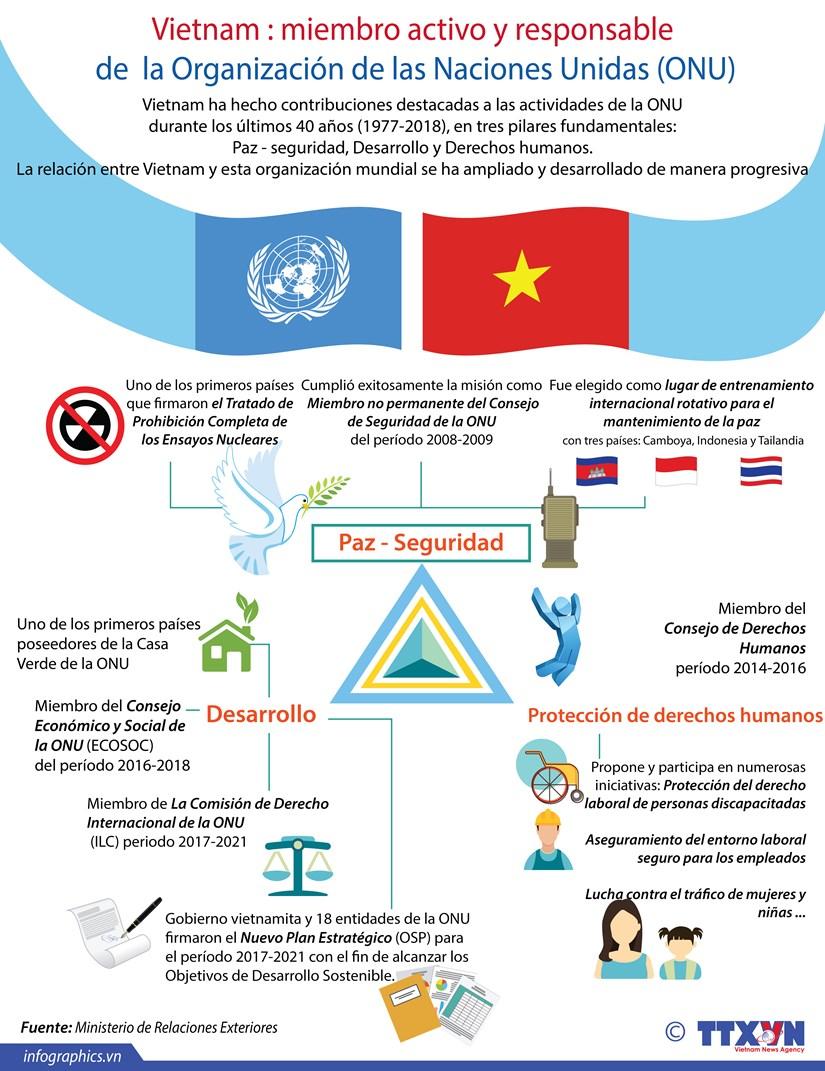 (Info) Vietnam, miembro activo y responsable de la ONU hinh anh 1