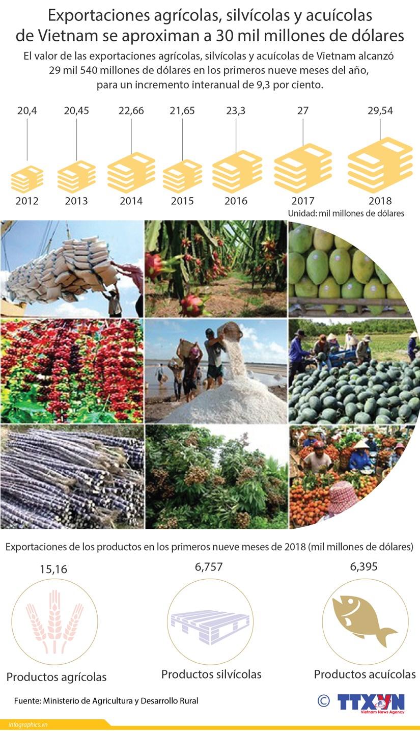 [Infografia] Exportaciones agricolas de Vietnam crecen en 9,3 por ciento hinh anh 1