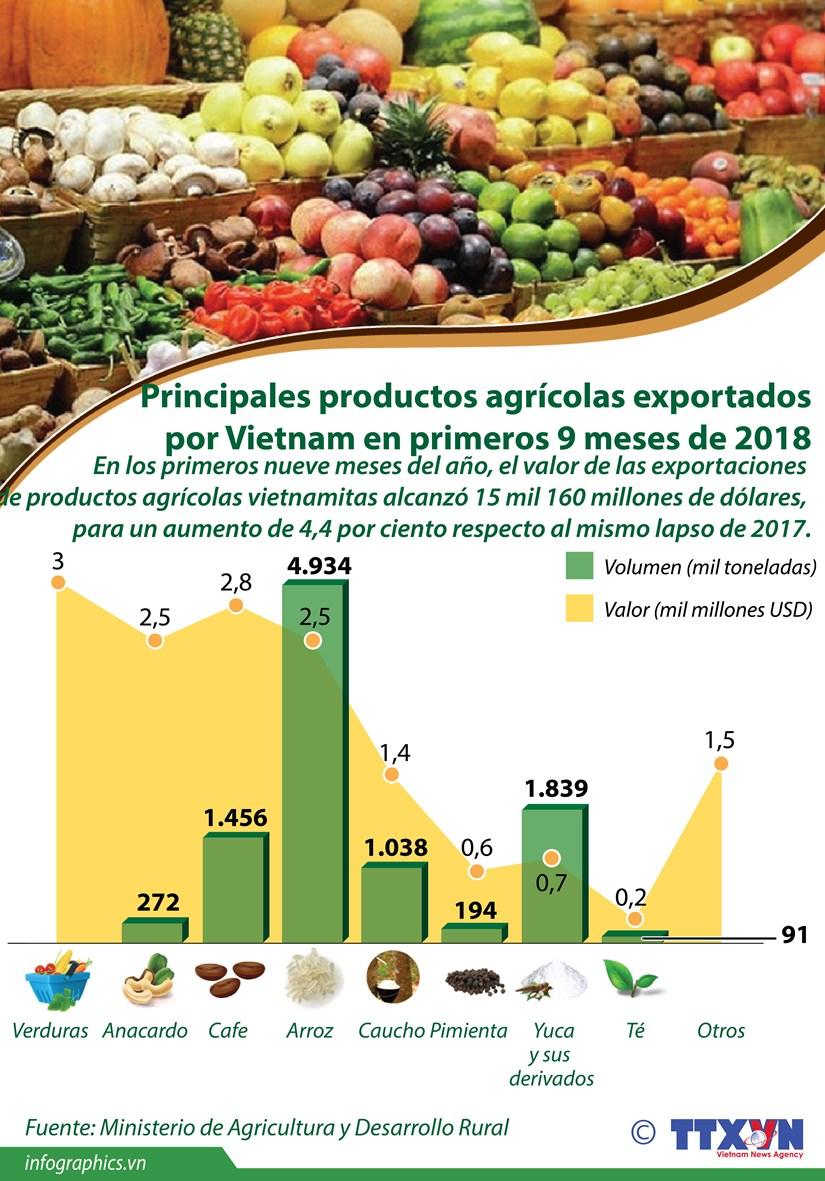 [Infografia] Principales productos agricolas exportados por Vietnam en primeros nueve meses de 2018 hinh anh 1