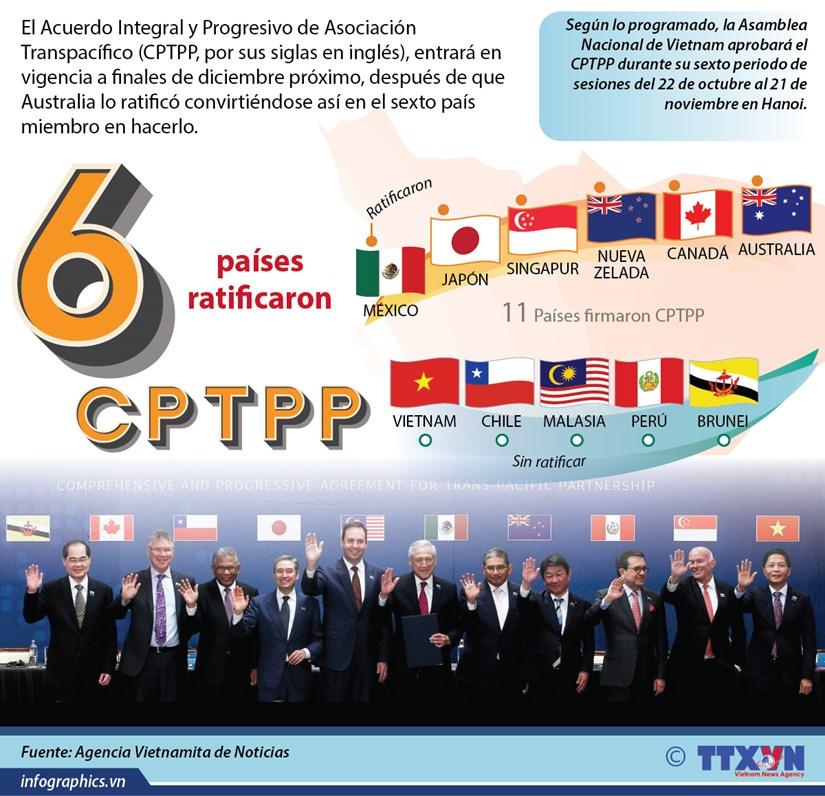 (Info) Seis paises ratificaron CPTPP hinh anh 1