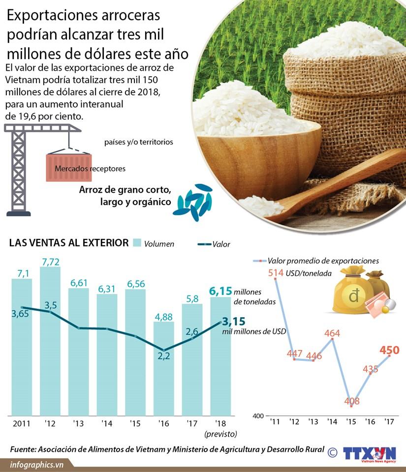 (Info) Exportaciones arroceras podrian alcanzar tres mil millones de dolares este ano hinh anh 1