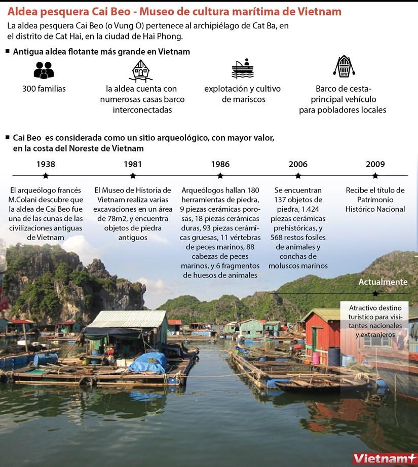 Aldea pesquera Cai Beo - Museo de cultura maritima de Vietnam hinh anh 1