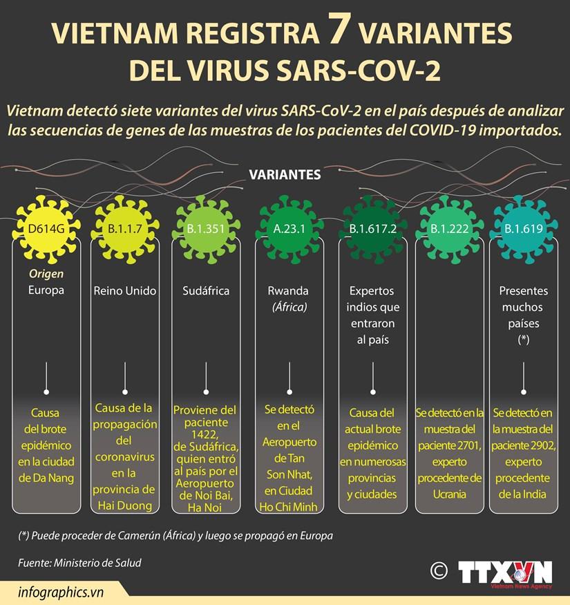 Vietnam registra siete variantes del virus SARS-CoV-2 hinh anh 1